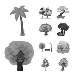 Tree and forest ico vector