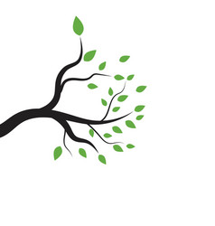 tree branch illustration design vector image