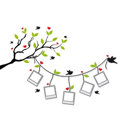 tree with photo frames and birds vector image