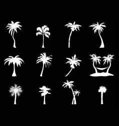 white palm tree icon on black background vector image