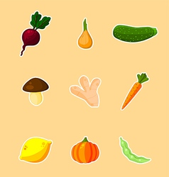 Vegetables - set vector image vector image