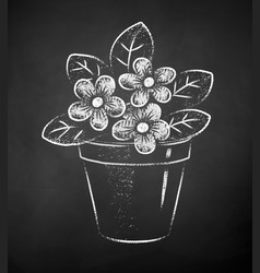 chalk drawn flower in pot vector image