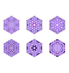 Geometrical colorful petal ornament hexagon shape vector