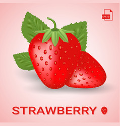Set of two fresh ripe strawberry with leaves vector