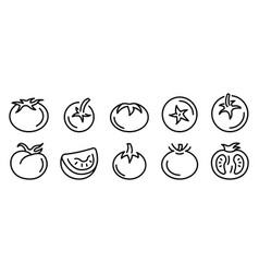 Tomato icons set outline style vector