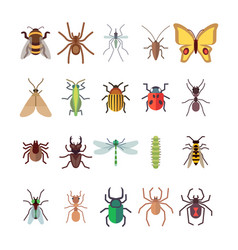 flat insects icons set butterfly dragonfly vector image