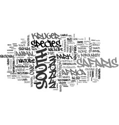 wonderful south african safaris text word cloud vector image vector image