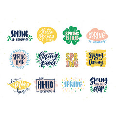 collection spring slogans or phrases written vector image