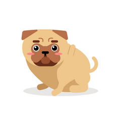 cute cartoon pug dog character vector image