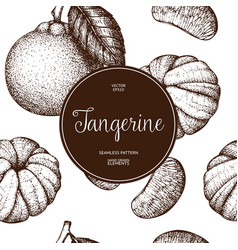 ink hand drawn tangerine background vector image