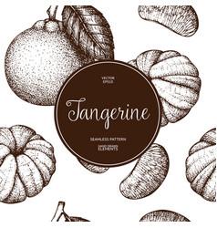 Ink hand drawn tangerine background vector