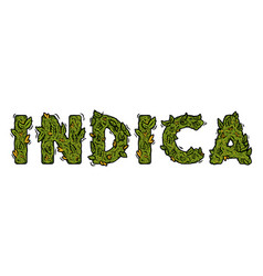 Lettering design weed inscription indica vector