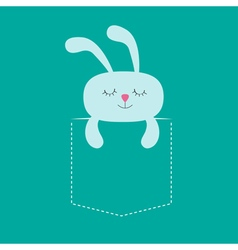 Rabbit hare sleeping in the pocket Cute cartoon vector