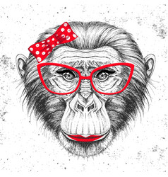 retro hipster animal monkey hand drawing muzzle vector image