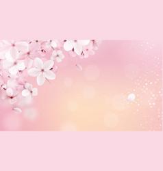 Sakura n 1 vector