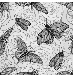 seamless pattern with butterflies on roses vector image