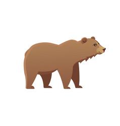 Cute bear grizzly vector