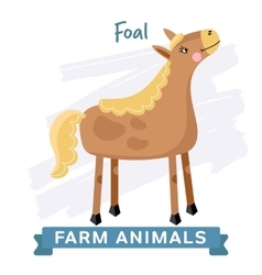 Foal isolated vector