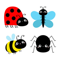 Insect set bee bumblebee butterfly spider ladybug vector