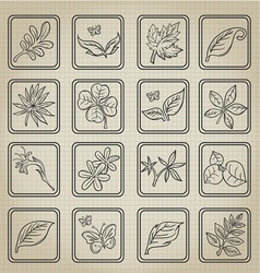 Natural Leafs Icon Doodle Set vector image