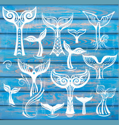 Set whales tail on rustic wood blue background vector