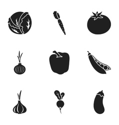 Vegetables set icons in black style Big vector image vector image