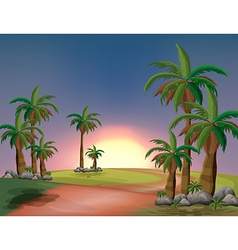 A forest with palm trees vector