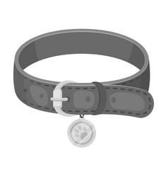 Collar with a medal for an animalpet shop single vector