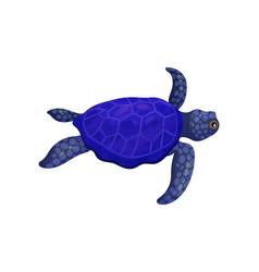Dark blue turtle on white vector