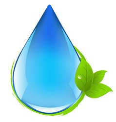 drop with leafs vector image