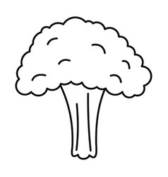 salad broccoli icon outline style vector image