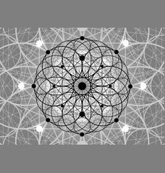 Seed life symbol sacred geometry flower life vector