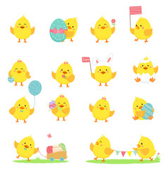 set yellow chickens vector image
