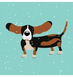 Dog Basset Hound under falling snow on the blue vector image