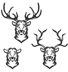 Set of deer heads in vector image vector image