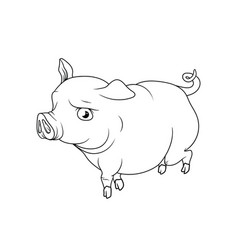 Big fat pig with cute eyes walking outline vector