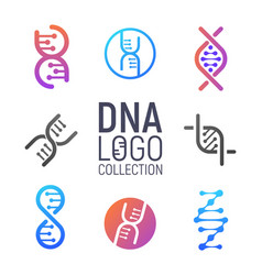 Dna logo collection isolated vector
