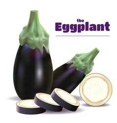 Eggplants and sliced vector