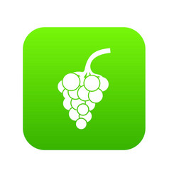 grape branch icon digital green vector image