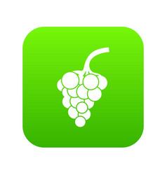 grape branch icon digital green vector image
