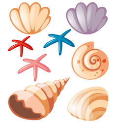Ocean set with seashells and starfish vector