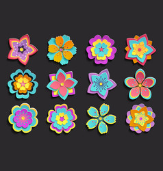 set colorful 3d flowers sakura vector image