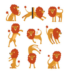 Collection of lion in various poses cartoon vector