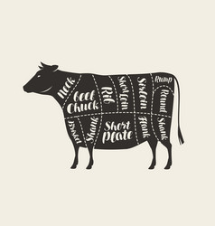 cuts meat cow butcher shop beef vector image