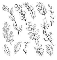 Doodle leaves and plants vector