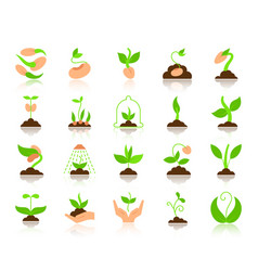 Sprout simple flat color icons set vector
