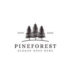 vintage minimalist pine tree pine forest vector image