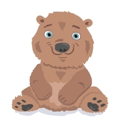 Little bear isolated on white vector image