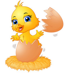 cracked egg with cute chick inside vector image