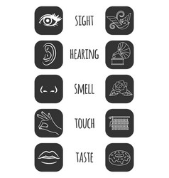 five senses icons feelings of vector image